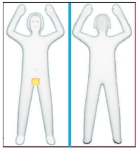 body-scanner