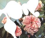 Roses V (2008)