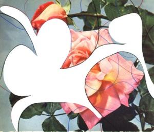 Roses VI (2008)